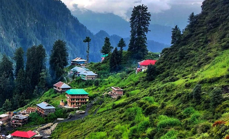 Kufri Hill Station Tour Packages