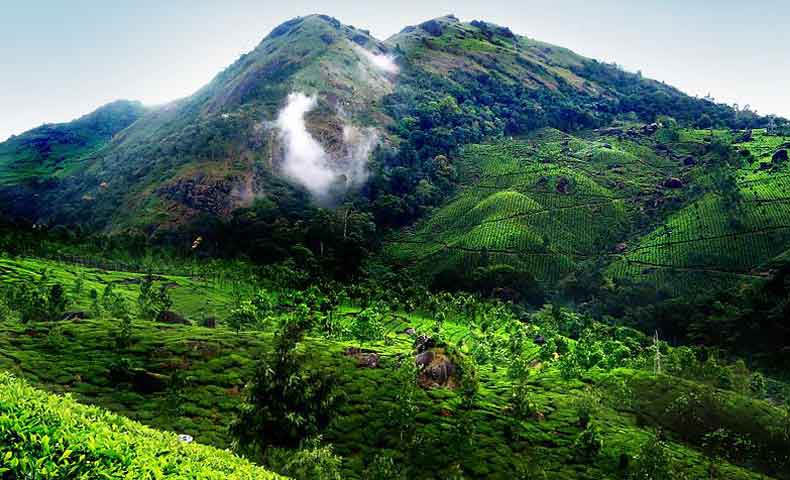 Exotic Kerala Hill Station Tour Packages