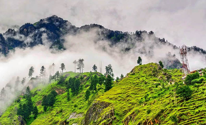 Chail Hill Station Tour Packages