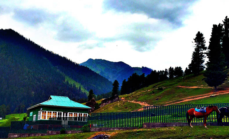 Doodhpathri Hill Station Tour Packages