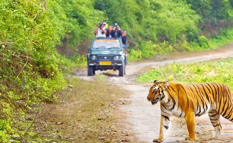 3 Nights 4 Days Nainital Corbett Tour Packages